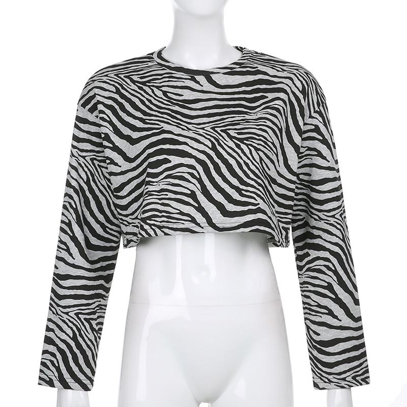 Zebra Sweatshirt (2)