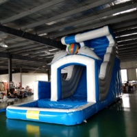 Beautiful Design Dolphin Slide Outdoor Inflatable Slide with Pool