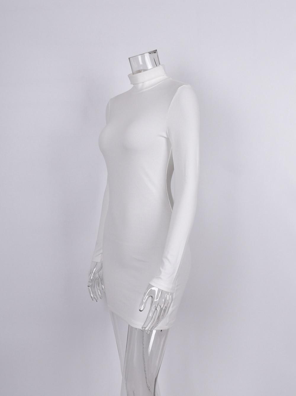 New Women's Wear Short Sexy Black Dress High Collar Long Sleeve - dresses