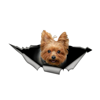 Interesting Yorkshire Terrier 3D Pet Car Sticker Window Motorcycle Decal Accessories PVC Skoda Honda Lada Chevrolet Volkswagen image