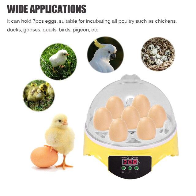 7 Eggs Capacity Chicken Eggs Bird Incubator Egg Rack Tray Automatic Intelligent Control Quail Parrot Incubation Tool UK Plug 2