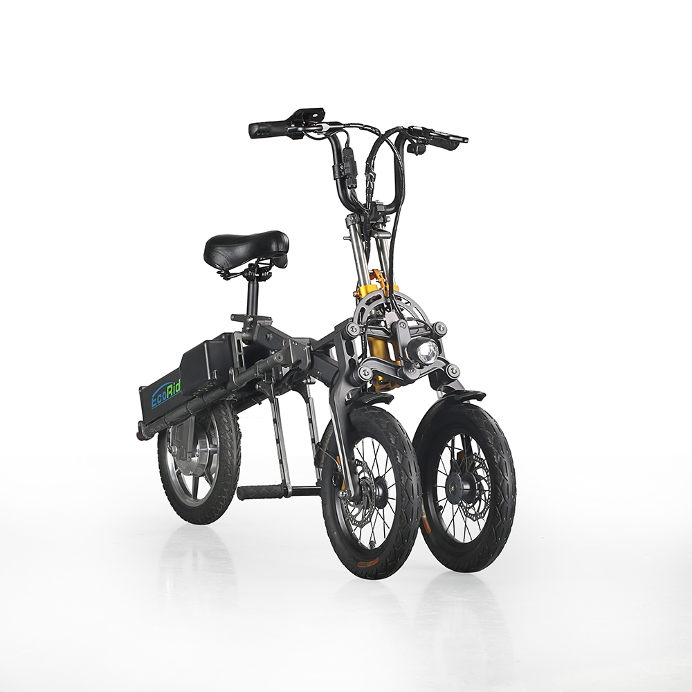 E6-7 EcoRider E6-7 Terrific 250W 48V Alloy Electric Bike 3 Wheel Electric Moped For Birthday Gift