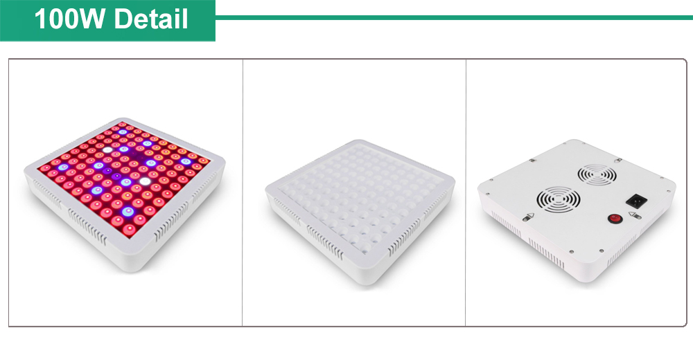 LED Grow Light Grow Box Lamps For Grow Tents Hydroponic Indoor Plants Seed Veg Bloom Fruit Plants Lamp 2000W 1500W (4)