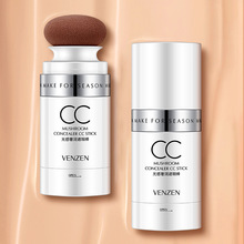 Mushroom Concealer CC Stick Beauty BB Cream Oil-Control Moisturizing Make-up Foundation Contour
