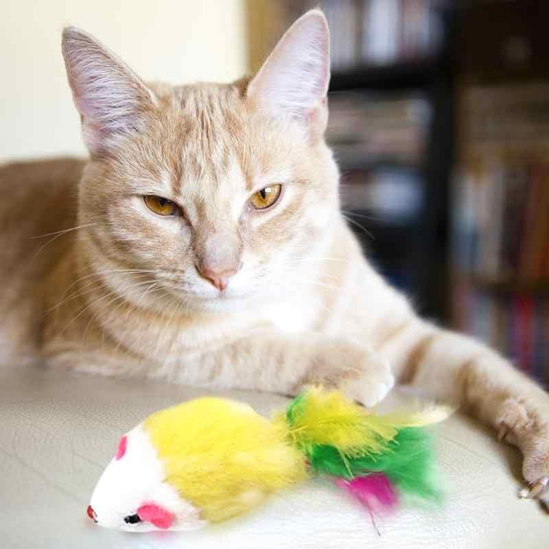 猫おもちゃ偽マウスペットの猫のおもちゃミニおかしい再生のおもちゃカラフルな羽ぬいぐるみミニマウスおもちゃ子猫