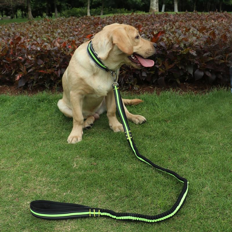 Pet Traction Rope Nylon Night Light Elasticity Traction Belt Medium Large Dog Rope Hot Selling New Products