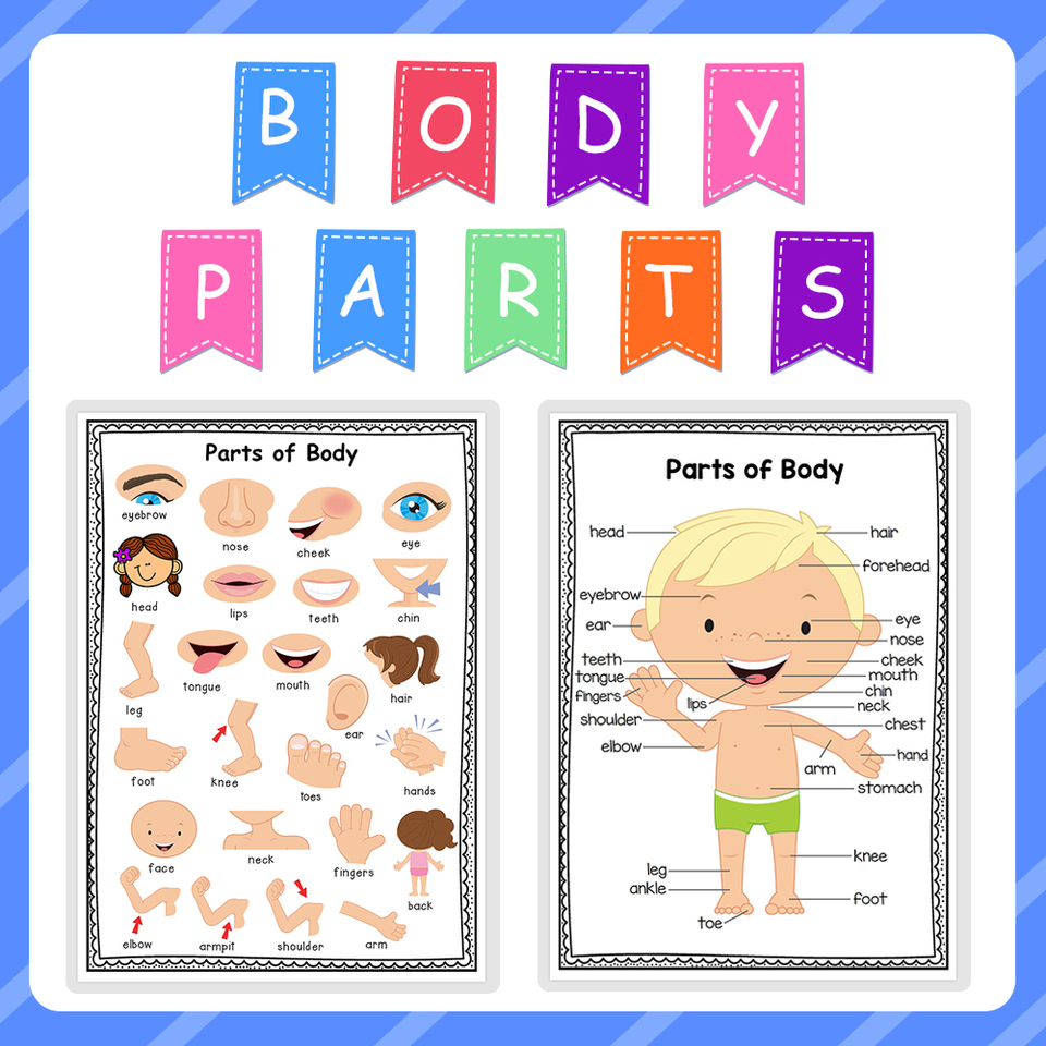 2pcs Word Family and Sight Words Wall Posters Kids Educational Poster for  Home