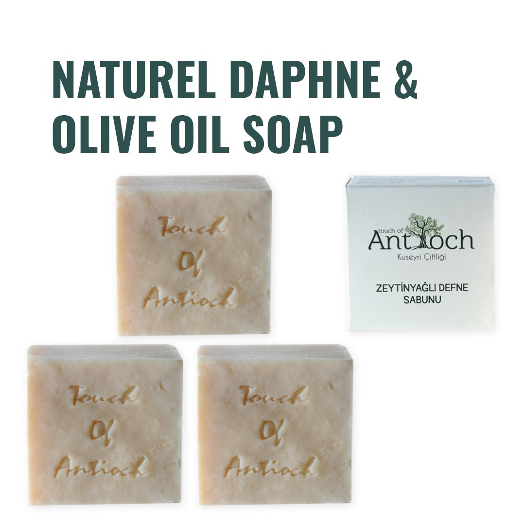Turkish Natural Daphne & Olive Oil Soap Antibacterial Deep Cleansing Face Hair Skin Care Eczema Treatment Hand Made (3 Pcs)