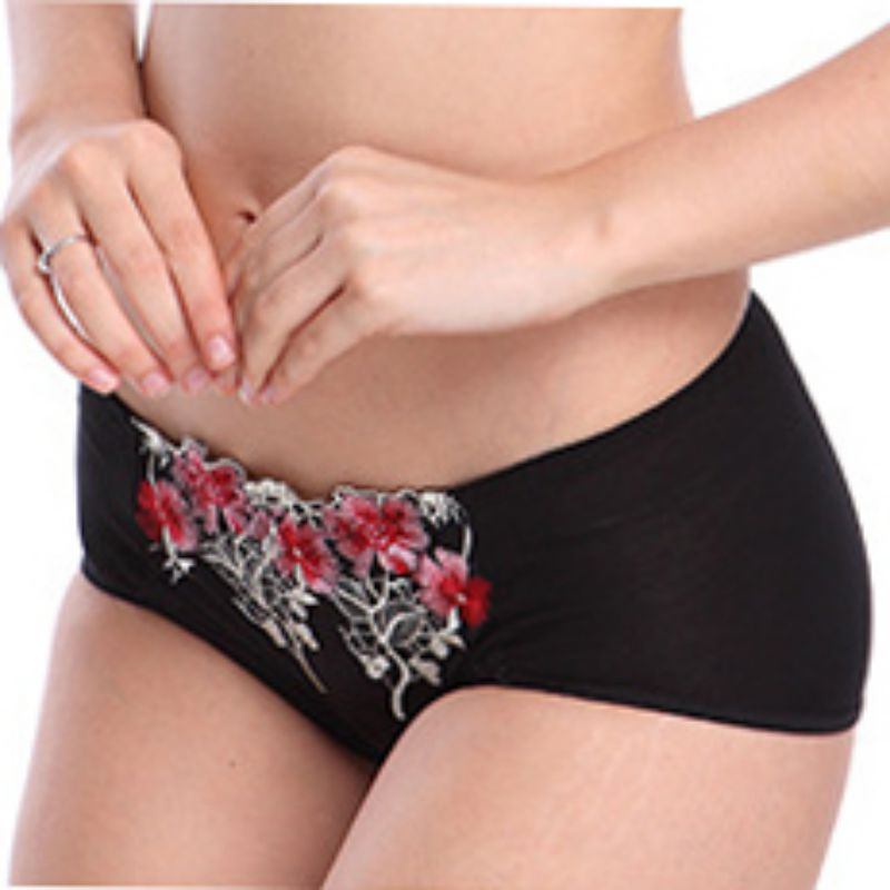 Women's Panties Sexy Lace Thin Embroidered Print Briefs Breathable Mid-rise Panties Valentine's Day