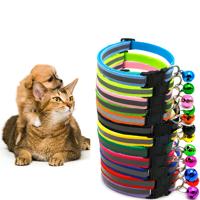 My Favorite Kitten Collar 🐾 Cat Collar & Bell  3