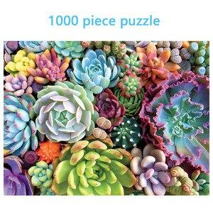Succulent Plants 1000 Piece Ad