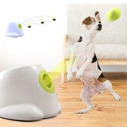 Lanzador de tenis para perros y mascotas, máquina de lanzamiento automática, dispositivo de lanzamiento de bolas, Sección de emisión de perro para perros pequeños, enchufe de 220V/110V