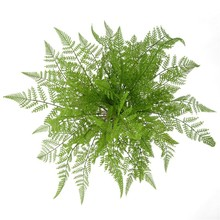 Artificial Fake Plastic Green Grass Plant Flowers Office Home Garden Decoration
