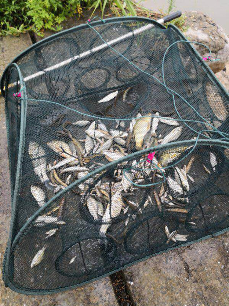 G Foldable Fish Cage Fishing Fishnet Flutter Folding Hand-Tossed Automatic China Cage Lobster Traps Loach Yellow 50 Yuan
