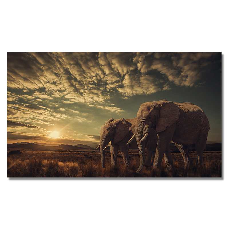 Two Elephants Landscape Wall Art Picture Printed on Canvas 19