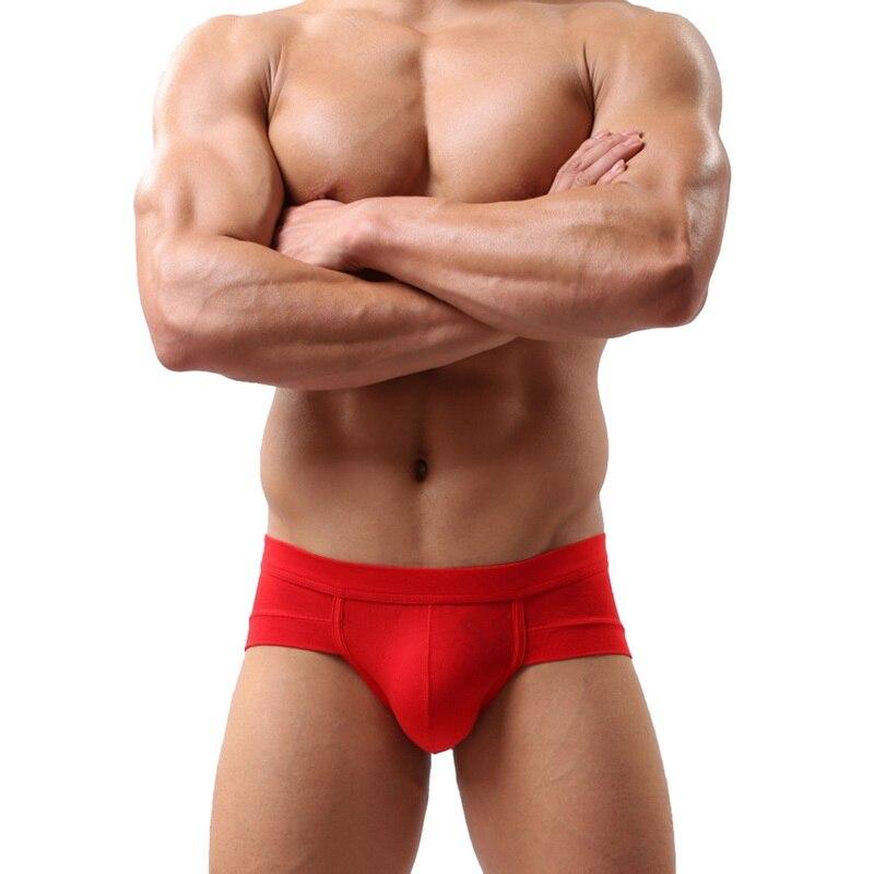Laamei Men's Sexy Breathable Brief Men Comfortable Briefs Underwear Cotton Underpants Shorts Cueca Man Underpants Male Panties