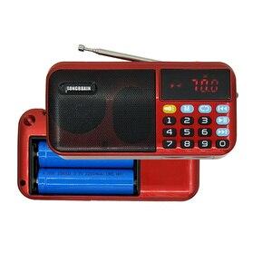 C-803 Portable FM Radio Speake