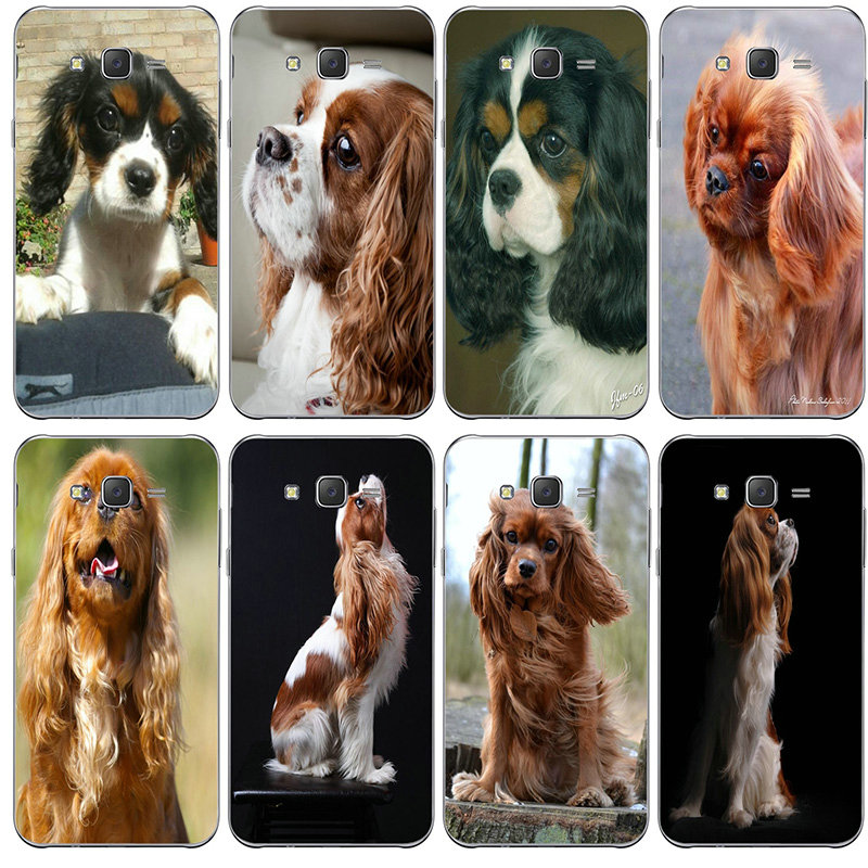 Cavalier King Charles Spaniel <font><b>Dog</b></font> Soft <font><b>Cases</b></font> TPU Cover for <font><b>Samsung</b></font> <font><b>Galaxy</b></font> <font><b>A3</b></font> A5 A7 A8 J1 J3 J4 J5 J6 J7 J8 2015 2016 <font><b>2017</b></font> 2018 image