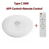 C 36W Remote Control