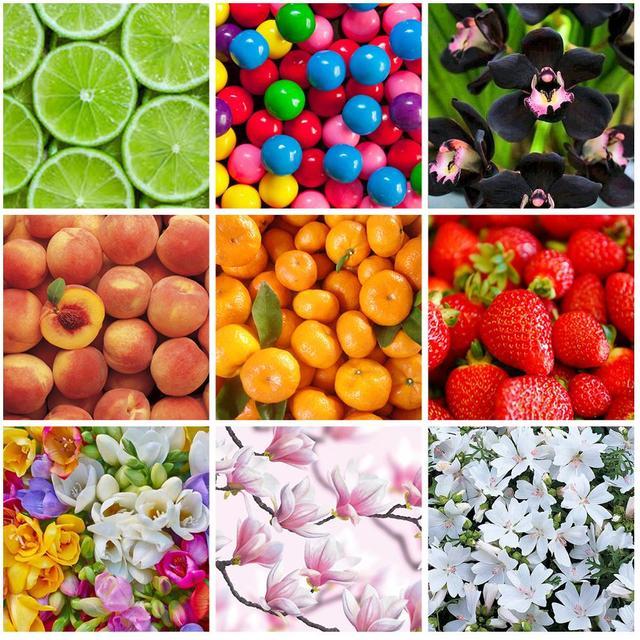 Lagunamoon 10ml Aventus Jadore bricolage huile de parfum fraise fleur d'oranger huile pour bougie savon faisant parfum Air frais diffuseur 5