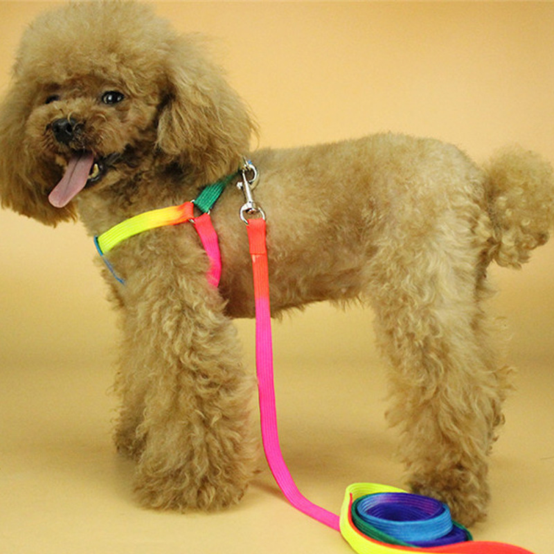 Pet Traction Dog Cute Teddy Puppy Lanyard Walking Colorful VIP Rabbit Puppy Small Chest Universal Cat Not