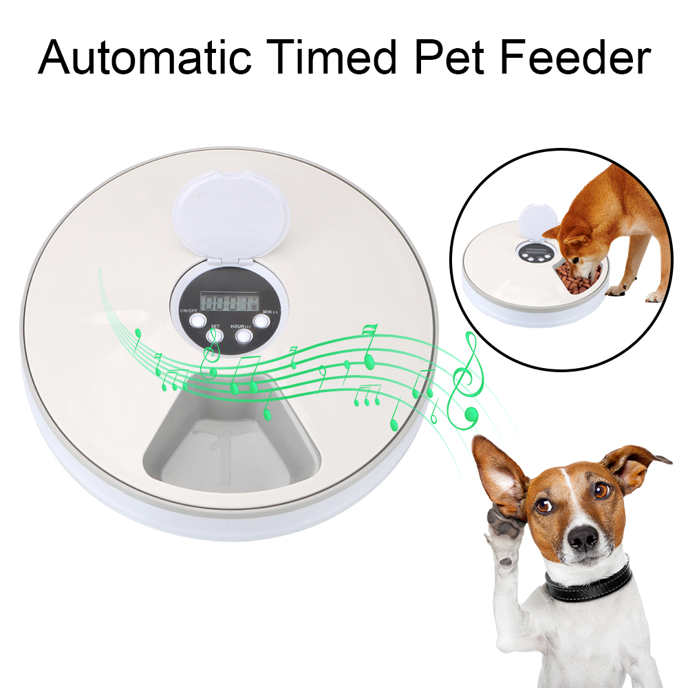 Round Timing Feeder 6 Meals 6 Grids  1