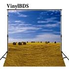 VinylBDS Baby Photo ...