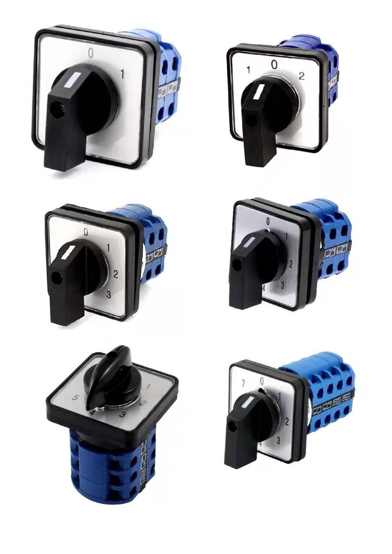 CA10/Panel Mount 2/positions bipolaire rotatif Cam commutateur