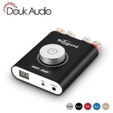 Douk audio HiFi NS-20G Hifi DSP Stereo Headphone Amp Mini Bluetooth 5.0 TPA3116 Digital Power Amplifier 200W Without Adapter