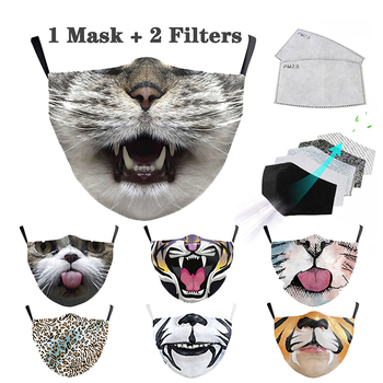 Washable Facemask with Filter PM2.5 Active Carbon Mouth Cover Protective Respira Purge Masks Reusable Cotton 3D Print Face Mask image