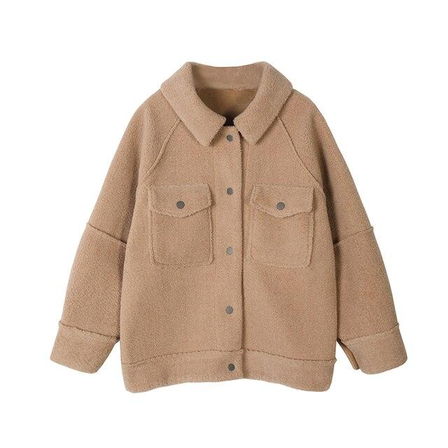 2020 début printemps anti peau de mouton manteau femme nouveau manteau en peluche en vrac chemise veste 6