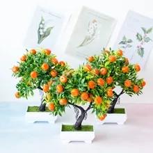 Shop Bonsai Orange Tree Great Deals On Bonsai Orange Tree On Aliexpress