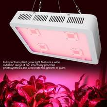 Plant LED COB Full Spectrum Grow Light Lamp for Greenhouse Indoor Plants Vegetable Flower 1200W(China)