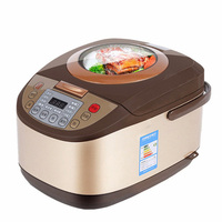 OLOEY Electric Rice Cooker 5L Timing Reservation Food Heating Pressure Cooking Steamer 2 8 People Soup Stew Pot Cake 24H EU US