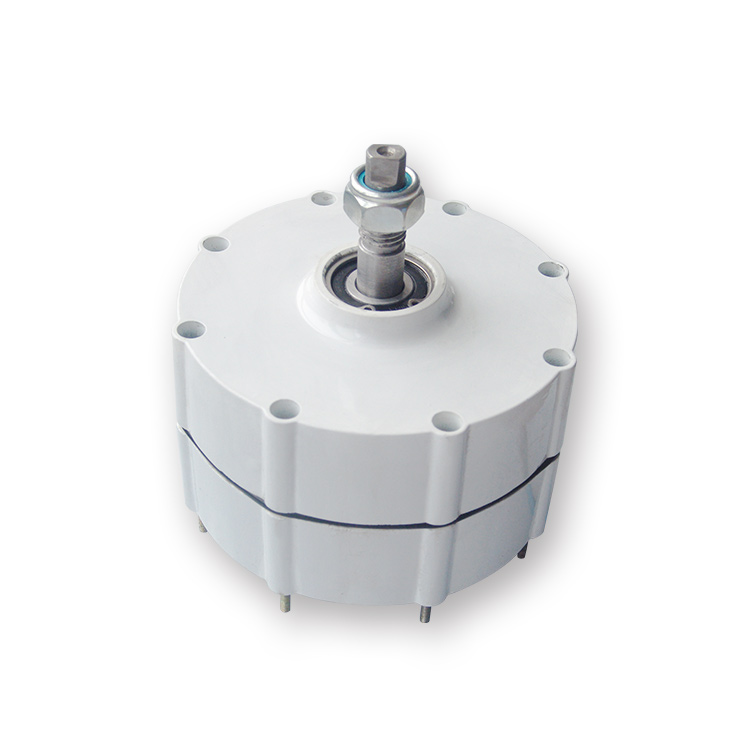 NdFeB Magnet Rare Earth Permanent Magnet Generator Wind Generator 500W600W800W