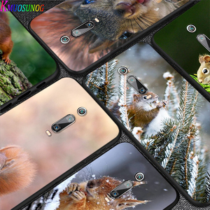 Cute Squirrel Nature for Xiaomi Redmi 10X 9 Prime 9C 9A 8 8A 7 6 5 4X 4 K20 Pro K30 Ultra 7A 6A 6 S2 5A Plus GO Phone Case