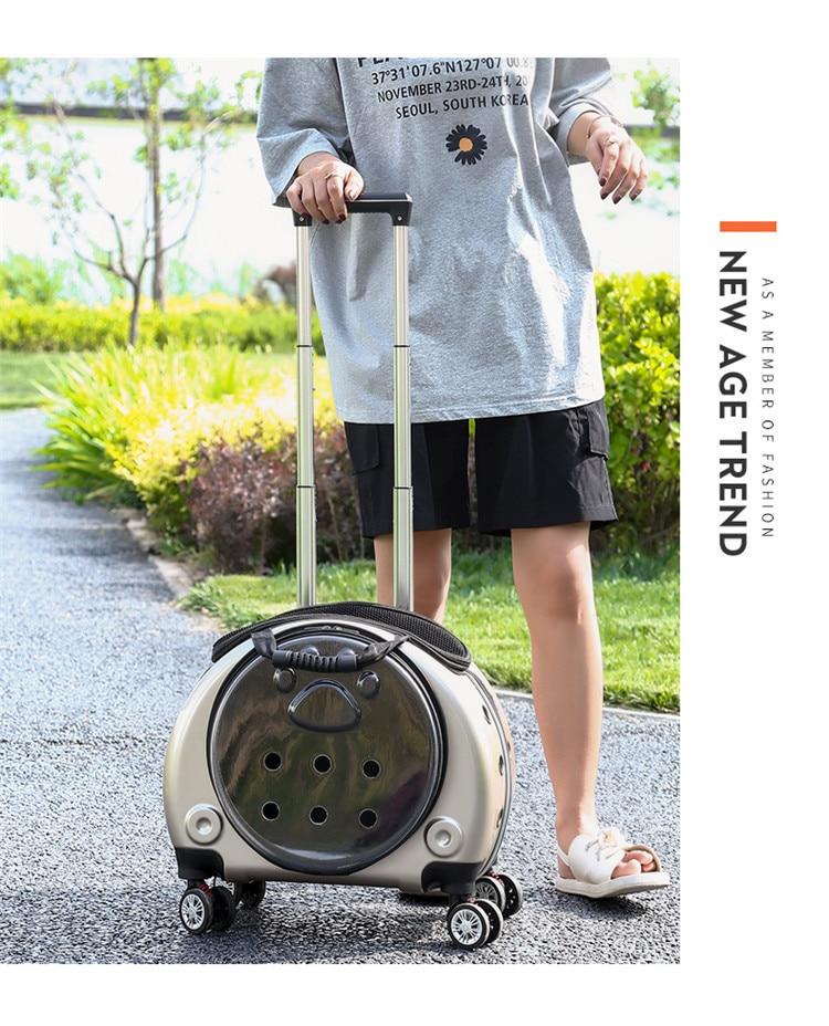 espaço multifuncional mochila respirável material gato pet