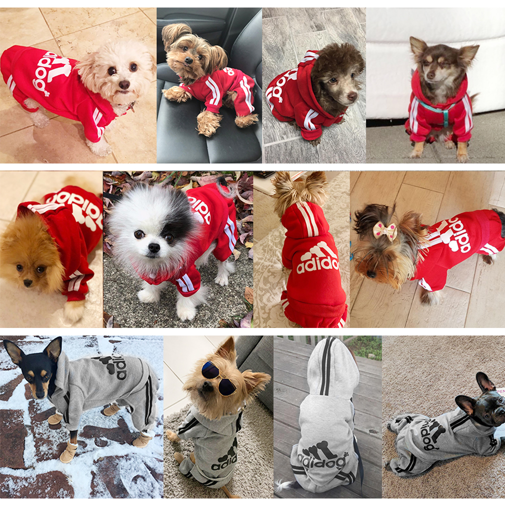 ADIDOG Dog Jacket with Hoodie and Four-Legged Design Made with Breathable Cotton Material 5