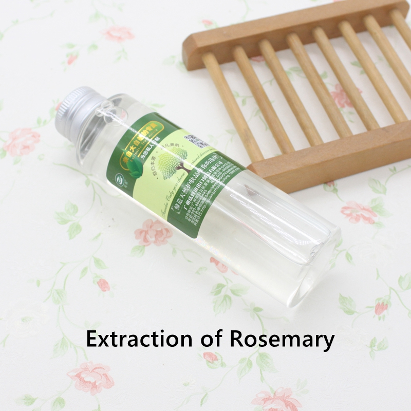 Hot Selling Rosemary Extract Lose Height Superior Quality Pure Natura