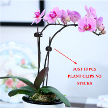 20pcs Plant Support Clips Garden Clips Flower Orchid Stem Clips for Vine Support Farm Flowers TomatoTied Bundle Branch Clamping
