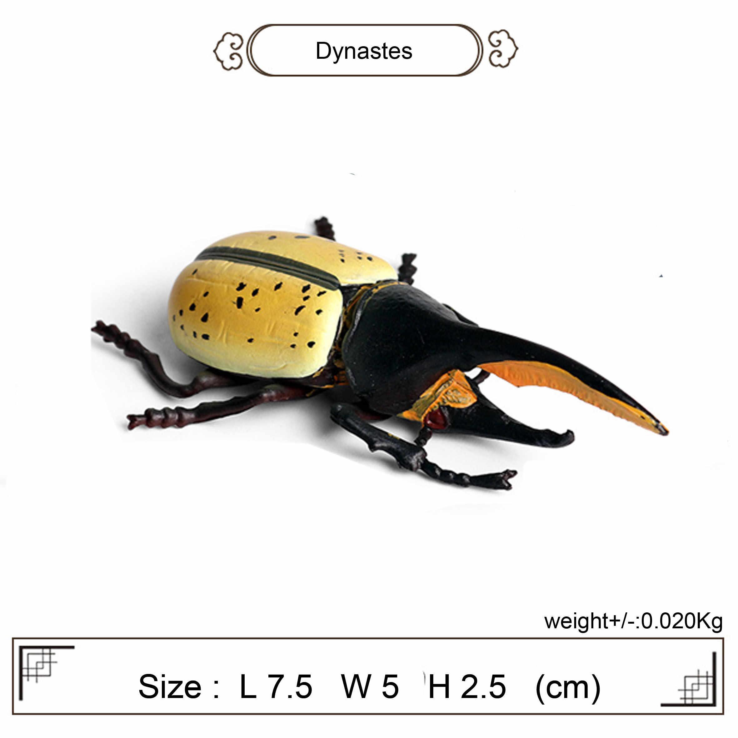 Assortiti realistico insetto bug figure aedes fuoco ant cricket dynastes e ape realistico collezione di insetti insetto giocattoli per i bambini
