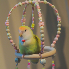Parrot Bird Toys Cages Accessories Canaries Chewable Bell  Plastic Wooden Games Women's Stand  Budgie Training Swing 2021 New