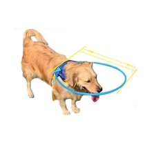 Pet Safe Halo Harness For Blind Dogs Anti-collision Ring Scorpion Cataract Animal Protection Circle Guide Dog