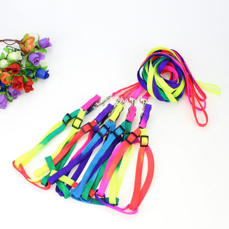 Colorful-Rainbow-Pet-Dog-Collar-Harness-Leash-Soft-Walking-Harness-Lead-Colorful-and-Durable-Traction-Rope (2)