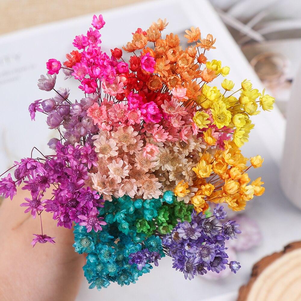 Горячая Распродажа, 30 шт., декоративные сушеные цветы, маленькие маргаритки, букет из небольших звезд, натуральные растения, сохраняющие цве...