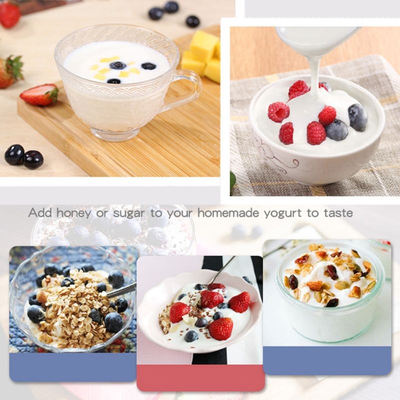 10g Yogurt Yeast Starter Natural 20 Types of Probiotics Home Made Lactobacillus Fermentation Powder Maker Homemade