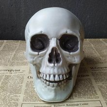 All Size Human Skull Head Skeleton Halloween Style Full Body Movable Joints Horror Hallowmas Home Party Decor