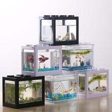 DishyKooker миниатюрная аквариумная рыбка Marimo Spider Marimo(без USB без светильник