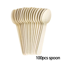100pc spoon