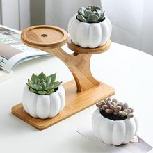 Modern Ceramic Plant Pot Bamboo Saucers Stand Holder for Home Office Decoration Plants Saucer Bonsai Pots Tray Cute